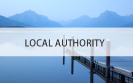 local authority cost consultants